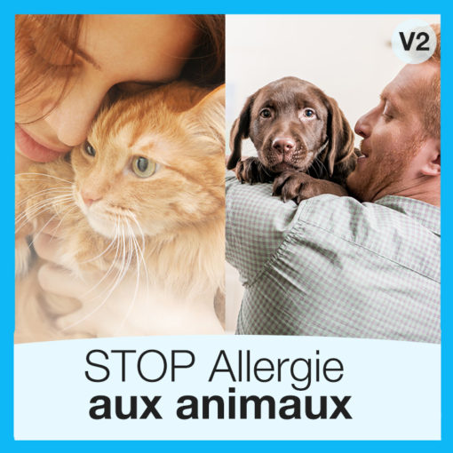 stop-allergie-animaux-chat